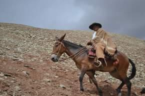 Marcelo Lima da clases de su destreza como jinete y conocimientos de la montaña