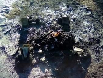 restos contenedor